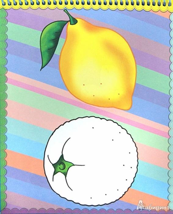 Иллюстрация 1 из 7 для Раскраска на гребне. Слон   Лабиринт - книги. Источник: Лабиринт