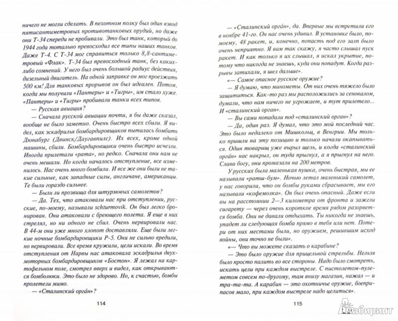Иллюстрация 1 из 13 для Жертвы Блицкрига. Как избежать трагедии 1941 года? - Юрий Мухин | Лабиринт - книги. Источник: Лабиринт