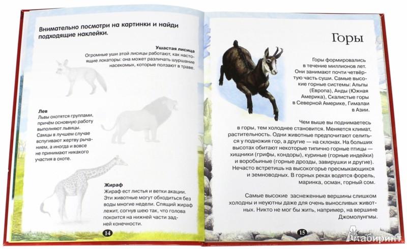 Иллюстрация 1 из 14 для Атлас животных с наклейками | Лабиринт - книги. Источник: Лабиринт