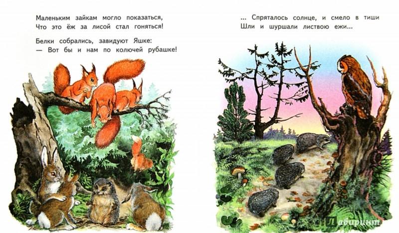Иллюстрация 1 из 32 для Слонёнок Санни - Владимир Борисов | Лабиринт - книги. Источник: Лабиринт