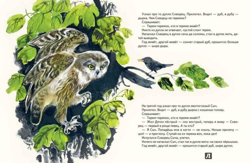 Иллюстрация 1 из 50 для Теремок - Виталий Бианки   Лабиринт - книги. Источник: Лабиринт