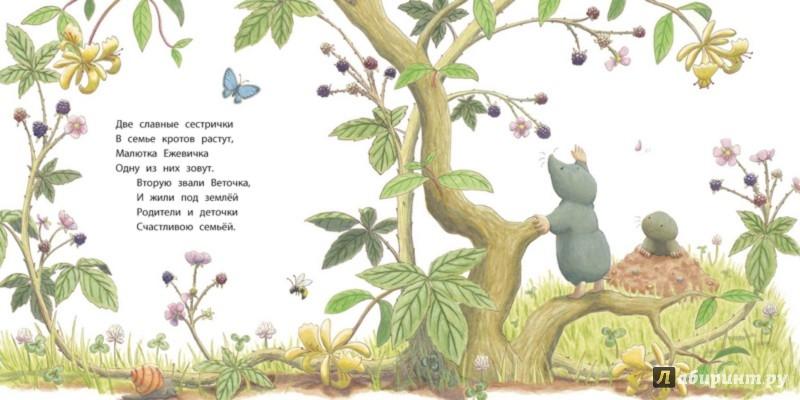 Иллюстрация 1 из 17 для Капризуля - Амбер Стюарт | Лабиринт - книги. Источник: Лабиринт
