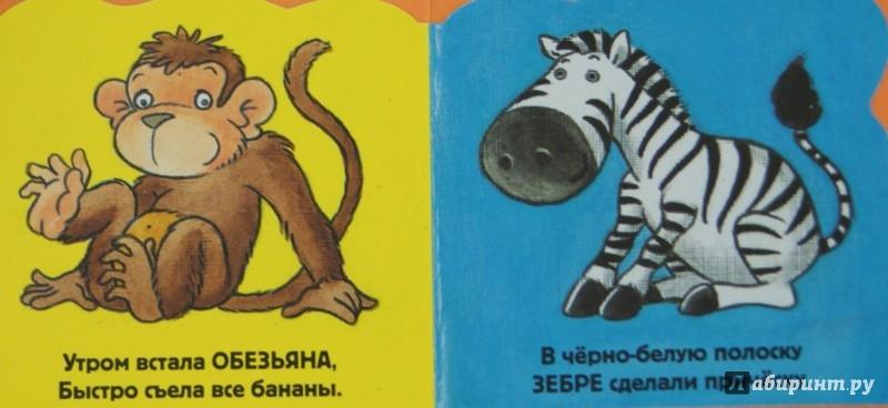 Иллюстрация 1 из 5 для В зоопарке - Элла Шапиро | Лабиринт - книги. Источник: Лабиринт