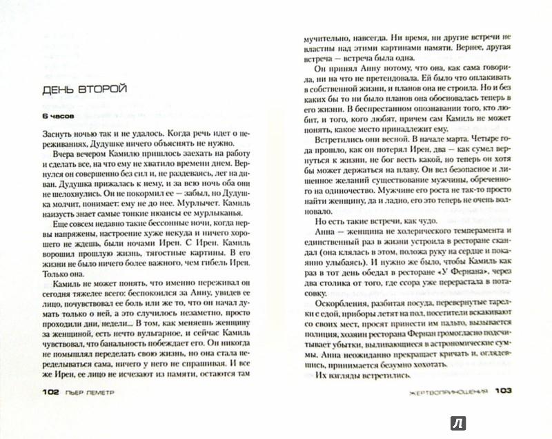 Иллюстрация 1 из 15 для Жертвоприношения - Пьер Леметр | Лабиринт - книги. Источник: Лабиринт