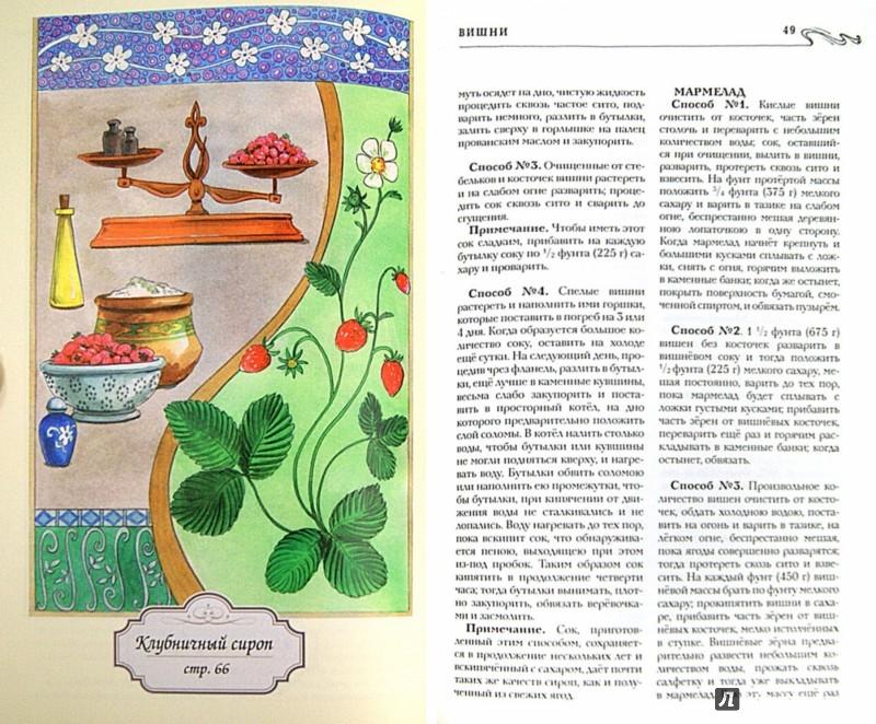 Иллюстрация 1 из 6 для О приготовлении варений и других сладких консервов | Лабиринт - книги. Источник: Лабиринт