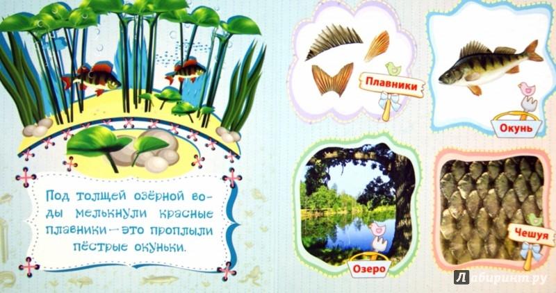 Иллюстрация 1 из 16 для Рыбы и другие обитатели рек - Вера Мельник | Лабиринт - книги. Источник: Лабиринт