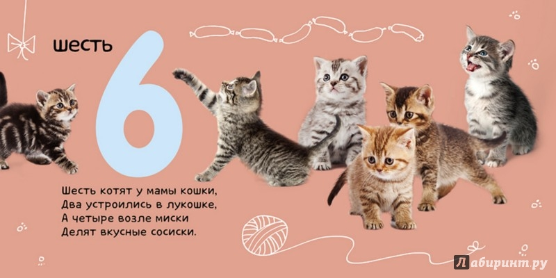 Иллюстрация 1 из 12 для Числа. Солнечная фото-книга - Татьяна Коваль   Лабиринт - книги. Источник: Лабиринт
