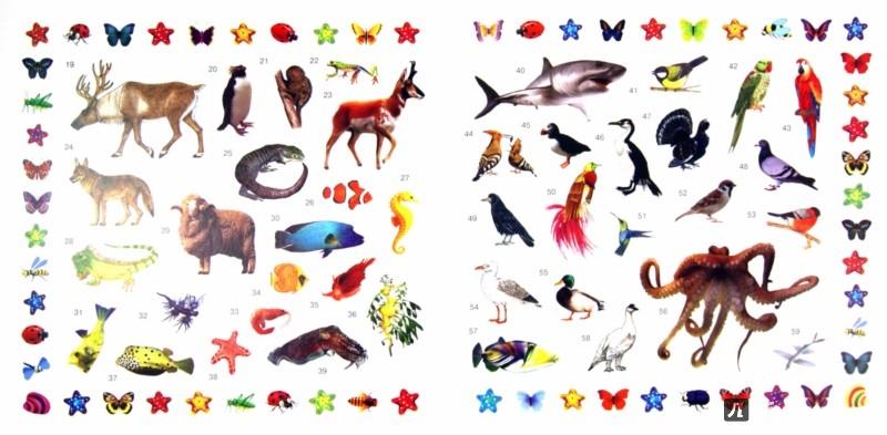 Иллюстрация 1 из 4 для В мире животных | Лабиринт - книги. Источник: Лабиринт