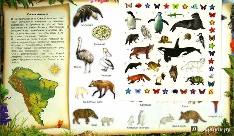Иллюстрация 1 из 31 для 400 наклеек. Животные. Самая необыкновенная книга | Лабиринт - книги. Источник: Лабиринт
