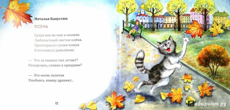 Иллюстрация 1 из 24 для Кошкина книжка - Иванова, Шипошина, Брайловский | Лабиринт - книги. Источник: Лабиринт