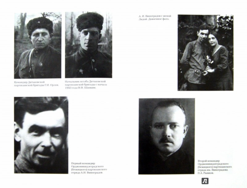 Иллюстрация 1 из 16 для Партизаны Брянского леса: какими они были 1941-1943 - Валерий Кучер | Лабиринт - книги. Источник: Лабиринт