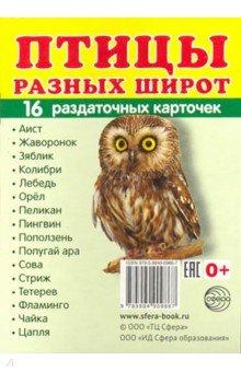 """Раздаточные карточки """"Птицы разных широт"""""""