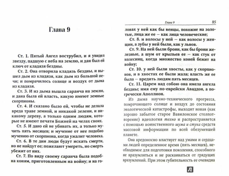 Иллюстрация 1 из 14 для Апокалипсис. Опыт подстрочного комментария | Лабиринт - книги. Источник: Лабиринт