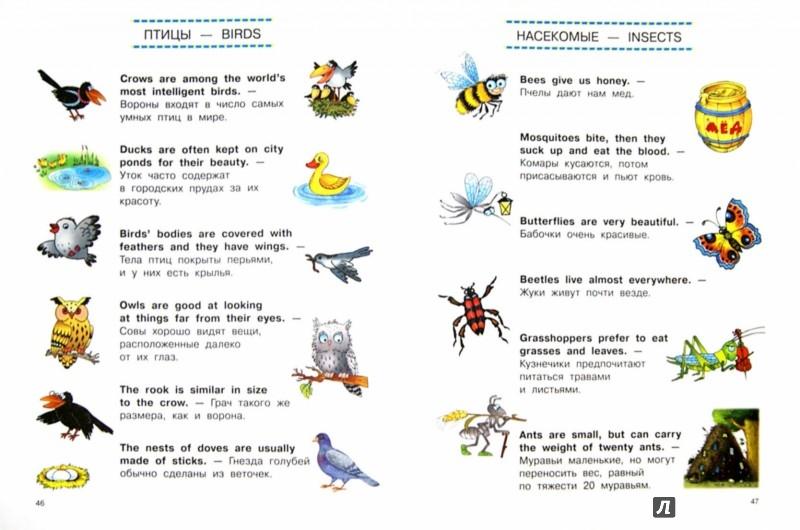 Иллюстрация 1 из 8 для Тренажер по разговорной речи - Сергей Матвеев | Лабиринт - книги. Источник: Лабиринт