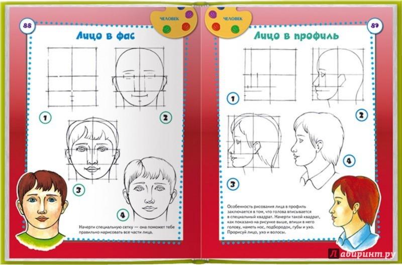 Иллюстрация 1 из 30 для Школа рисования. Рисуем за 4 шага - Валентина Пенова | Лабиринт - книги. Источник: Лабиринт
