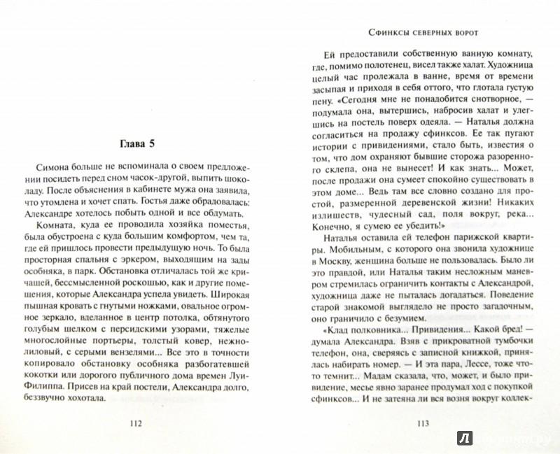 Иллюстрация 1 из 31 для Сфинксы северных ворот - Анна Малышева   Лабиринт - книги. Источник: Лабиринт
