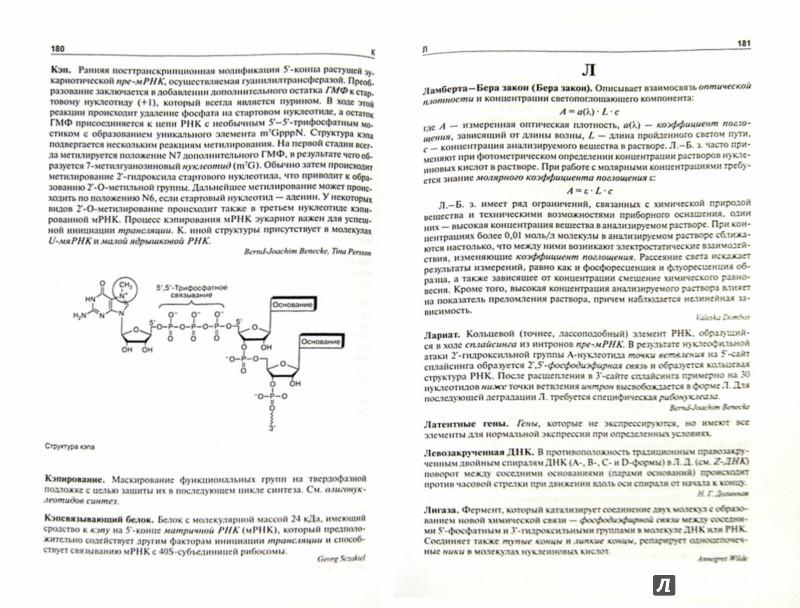 Иллюстрация 1 из 14 для Нуклеиновые кислоты. От А до Я - Аппель, Бенеке, Бененсон | Лабиринт - книги. Источник: Лабиринт