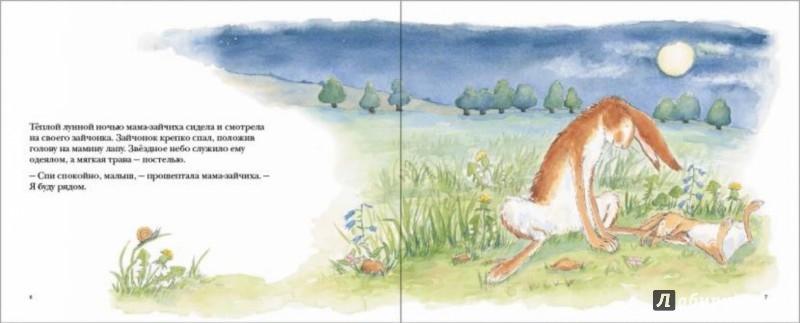 Иллюстрация 1 из 63 для Куда уложить зайчонка? - Шеридан Кейв | Лабиринт - книги. Источник: Лабиринт