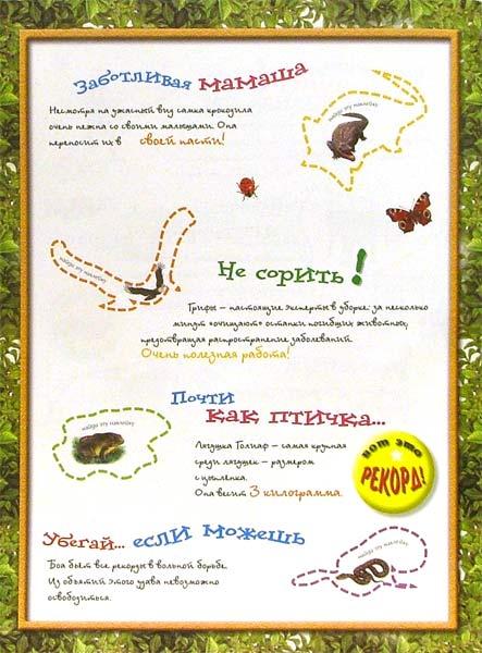 Иллюстрация 1 из 2 для Эти удивительные животные (желтая) | Лабиринт - книги. Источник: Лабиринт