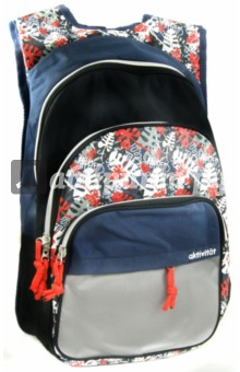 Рюкзак молодежный FALL (830682) Silwerhof