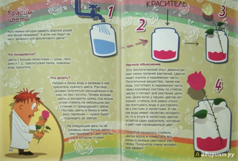 Иллюстрация 1 из 43 для Веселые научные опыты для детей. 30 увлекательных экспериментов в домашних условиях - Егор Белько | Лабиринт - книги. Источник: Лабиринт