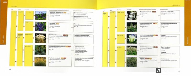 Иллюстрация 1 из 21 для Справочник растений. Как сажать, ухаживать, сочетать - Элизабет Флехаус | Лабиринт - книги. Источник: Лабиринт