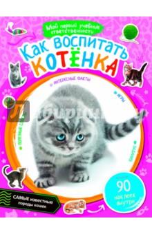 Как воспитать котёнка куплю британского котенка недорого в днепропетровске