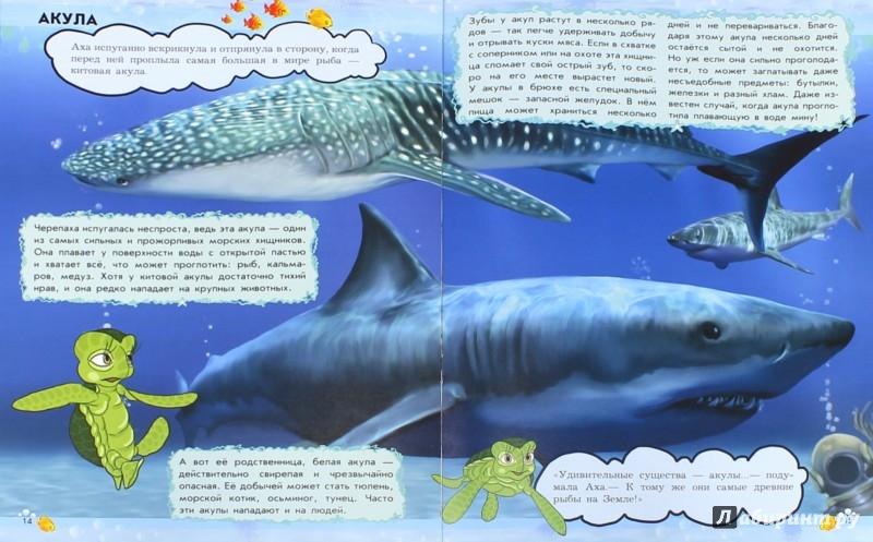 Иллюстрация 1 из 12 для О чём мечтает кашалот? Обитатели морей и океанов - Анна Макулина   Лабиринт - книги. Источник: Лабиринт