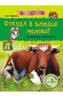 Купить Откуда в блюдце молоко? Домашние животные, Ранок, Знакомство с миром вокруг нас