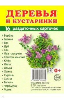"""Раздаточные карточки """"Деревья и кустарники"""" (63х87 мм)"""