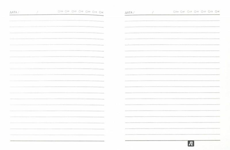 Иллюстрация 1 из 11 для Ежедневник недатированный. СОВЫ-ПЭЧВОРК. (А6, 80 листов) (34012-24) | Лабиринт - канцтовы. Источник: Лабиринт
