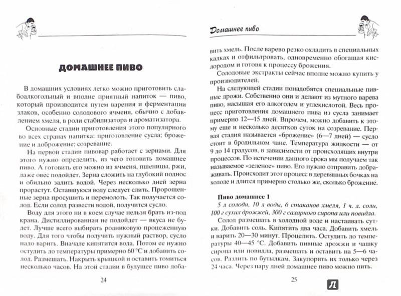 Иллюстрация 1 из 5 для Домашние слабоалкогольные напитки - Николай Звонарев | Лабиринт - книги. Источник: Лабиринт