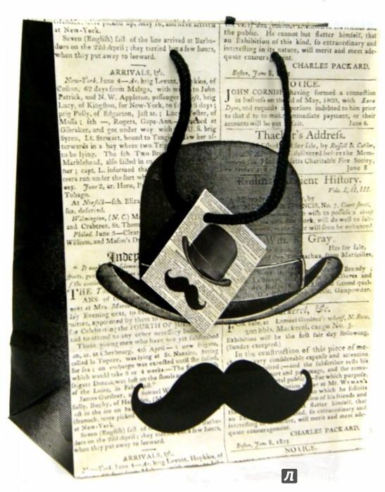 Иллюстрация 1 из 7 для Пакет бумажный 17,8*22,9*9,8 см (35936) | Лабиринт - сувениры. Источник: Лабиринт