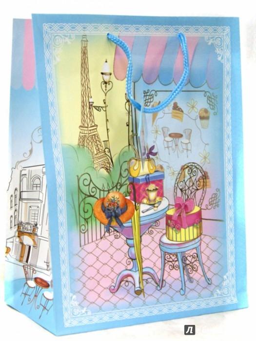 Иллюстрация 1 из 5 для Пакет бумажный 26*32.4*12.7 см (35973) | Лабиринт - сувениры. Источник: Лабиринт