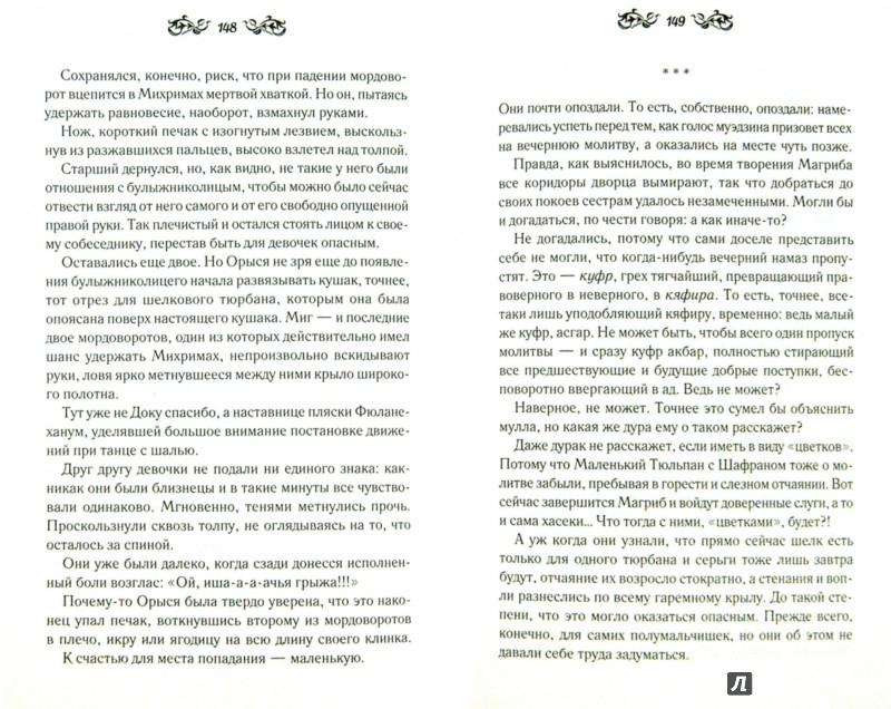 Иллюстрация 1 из 21 для Дочь Роксоланы - Эмине Хелваджи | Лабиринт - книги. Источник: Лабиринт