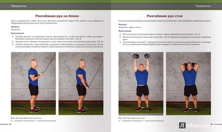 Иллюстрация 1 из 21 для Бодибилдинг. Силовые упражнения и планы тренировок - Рэй Клерк | Лабиринт - книги. Источник: Лабиринт