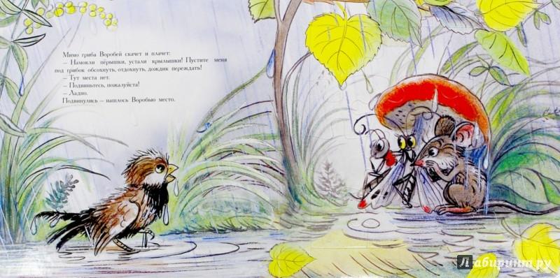 Иллюстрация 1 из 17 для Под грибом - Владимир Сутеев | Лабиринт - книги. Источник: Лабиринт