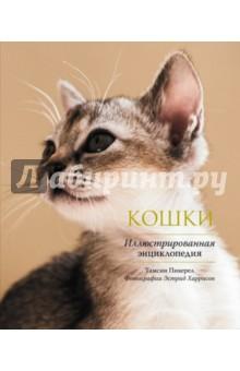 Кошки. Иллюстрированная энциклопедия иллюстрированная книга о собаках