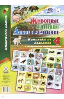 Комплект плакатов. 4 плаката с методическим сопровождением. Животные и птицы. Дикие и домашние. ФГОС глушкова н худ моя первая раскраска домашние питомцы домашние животные дикие животные isbn 9785978007176