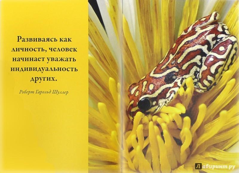Иллюстрация 1 из 2 для Ты в мире не один - Уорд Кэлхун | Лабиринт - книги. Источник: Лабиринт
