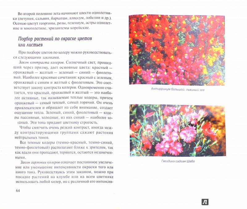 Иллюстрация 1 из 7 для Ваши любимые однолетние цветы. Выращивание, дизайн, продажа - Н. Жуковская | Лабиринт - книги. Источник: Лабиринт