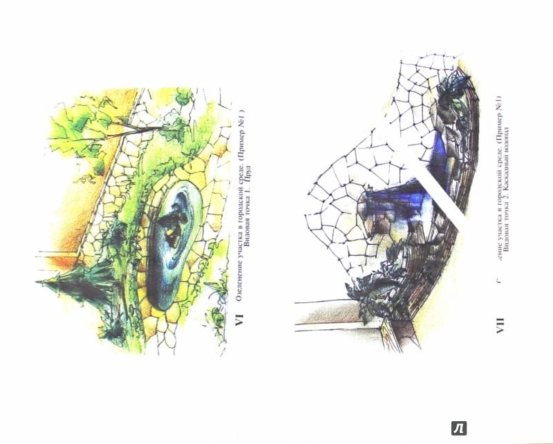 Иллюстрация 1 из 25 для Декоративные деревья и кустарники в ландшафтном озеленении - Мальцева, Алексеев-Малахов | Лабиринт - книги. Источник: Лабиринт