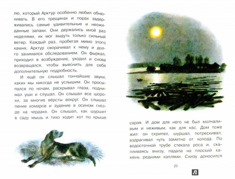 Иллюстрация 1 из 32 для Арктур - гончий пёс - Юрий Казаков | Лабиринт - книги. Источник: Лабиринт
