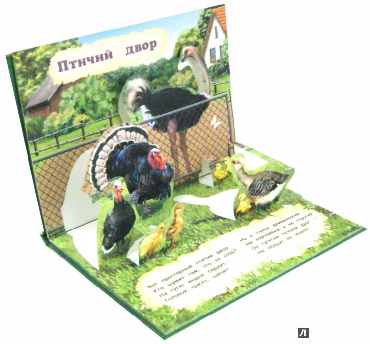 Иллюстрация 1 из 6 для Домашние животные - Софья Буланова | Лабиринт - книги. Источник: Лабиринт