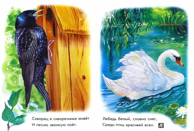 Иллюстрация 1 из 23 для Рядом с нами - Олеся Квитка | Лабиринт - книги. Источник: Лабиринт
