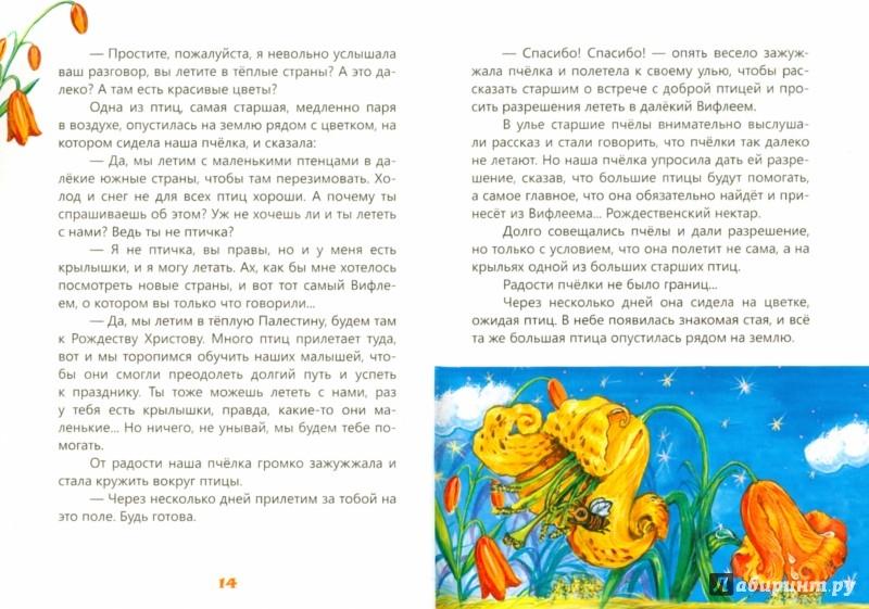 Иллюстрация 1 из 27 для Звездный венец Рождества - Ольга Першина | Лабиринт - книги. Источник: Лабиринт