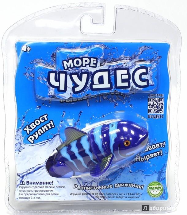 """Иллюстрация 1 из 6 для Рыбка-акробат """"Санни"""", 12 см (126211-2)   Лабиринт - игрушки. Источник: Лабиринт"""