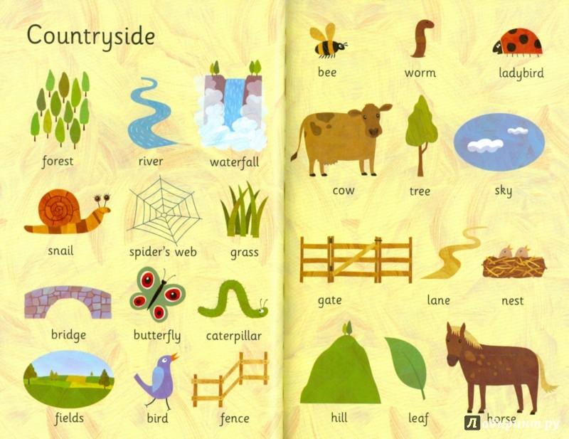 Иллюстрация 1 из 22 для Everyday Words | Лабиринт - книги. Источник: Лабиринт