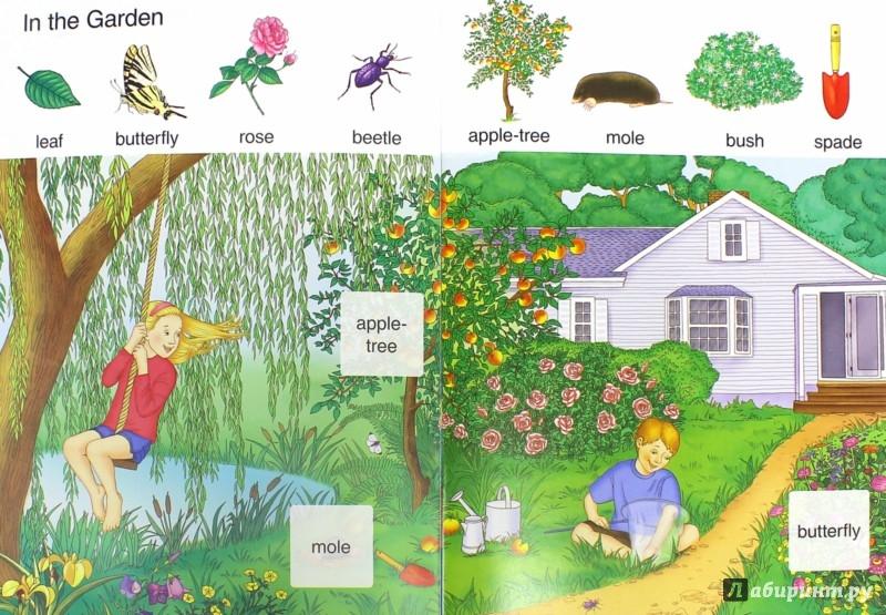 Иллюстрация 1 из 14 для Английский шаг за шагом. Мои первые слова книга 2 | Лабиринт - книги. Источник: Лабиринт