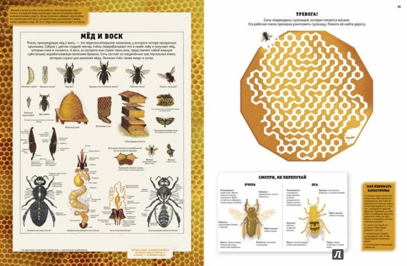 Иллюстрация 1 из 13 для Интерактивная энциклопедия по биологии с наклейками | Лабиринт - книги. Источник: Лабиринт